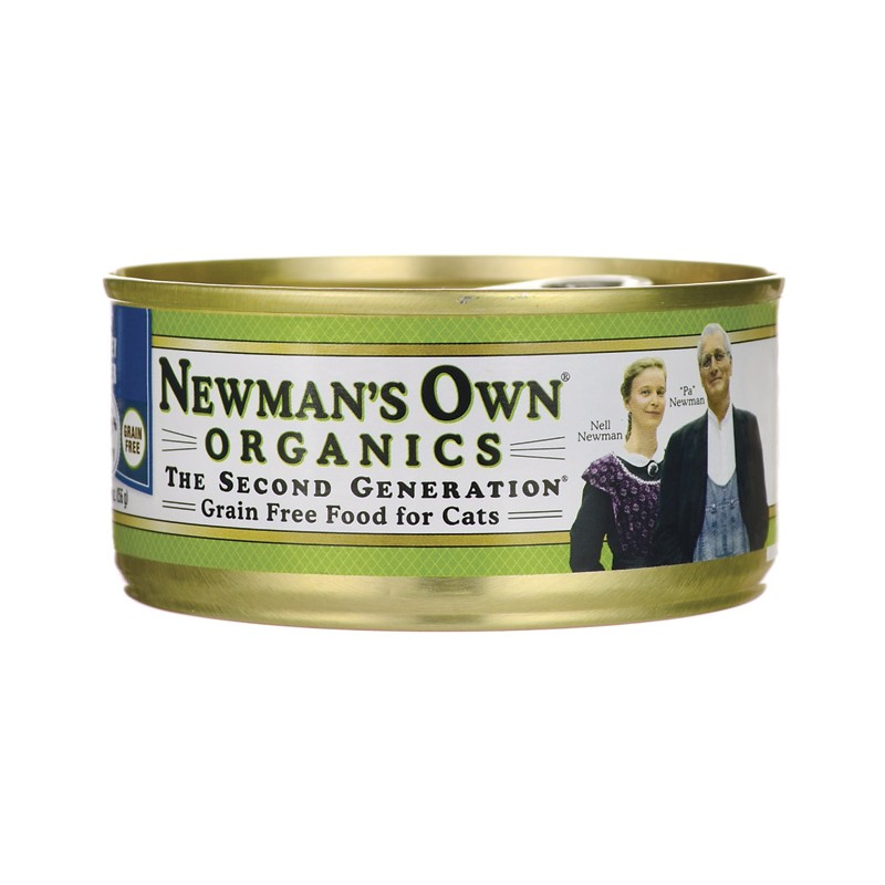 Is Grain Free Cat Food Good For Cats