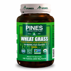 Wheat Grass, 500 mg 100 Tabs