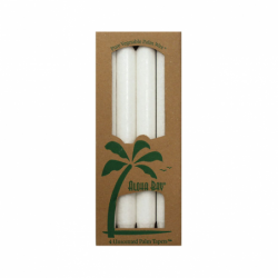 Palm Taper Candles 9 Inch White, 4 Pack(s)
