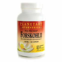 Ayurvedic Full Spectrum Forskohlii, 130 mg 120 Caps