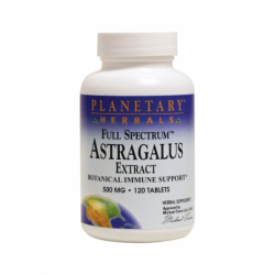 Astragalus Extract Full Spectrum, 500 mg 120 Tabs