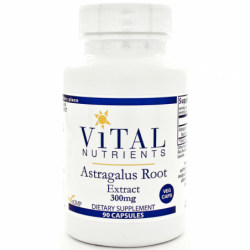 Astragalus Root Extract, 300 mg 90 Veg Caps
