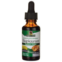 Bupleurum  Alcohol Free, 1 fl oz (30 mL) Liquid