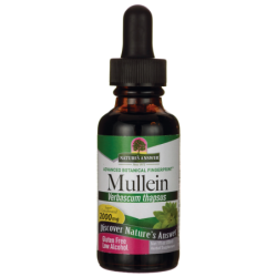 Mullein, 1 fl oz (30 mL) Liquid