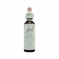 White Chestnut, 20 ml Liquid
