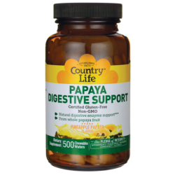 Papaya Digestive Support, 500 Wafers